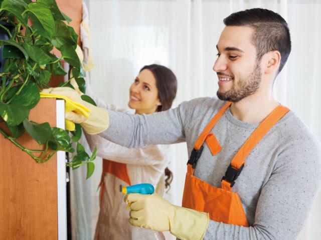 Nettoyage de printemps et bricolage intérieur